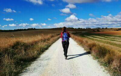 Caminoterapia. La línea de la vida