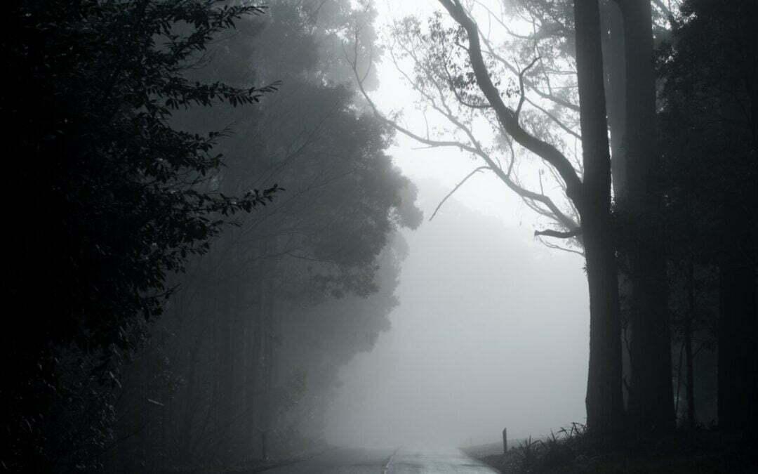 Presencias fantasmagóricas en el Camino de Santiago